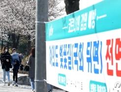 [사진] 여의도 벚꽃길, 4월 1일부터 '전면통제'