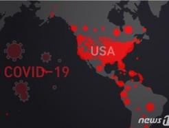 미국 확진자 하루새 2.5만명 늘어 24만명 넘어서(상보)
