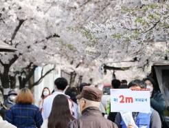 [사진] 2m 거리두기 캠페인 무색한 여의도 벚꽃길