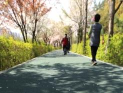 [사진] 양재천 한 방향 걷기