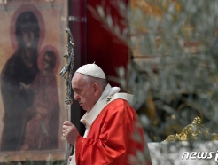 """교황 """"코로나, 기후변화에 대한 자연의 응답일 수도"""""""