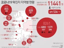 [사진] [그래픽] 코로나19 확진자 지역별 현황(30일)