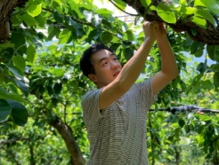 남양주 도시농업, 함께라는 농업의 가치를 만들어가다