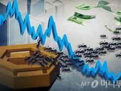 신용융자 몰린 주식 대부분 테마주…'투자 주의보'