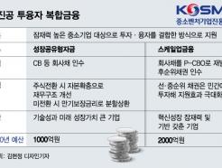 시총 1조 中企 만든 '투·융자 복합금융' 확대한다