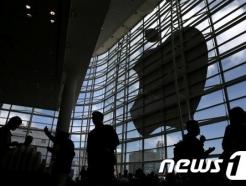 """애플 """"어떤 시장에서도 우위 점하지 못해…독점 억울"""""""