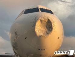 코가 납작해진 델타여객기 케네디공항 비상 착륙