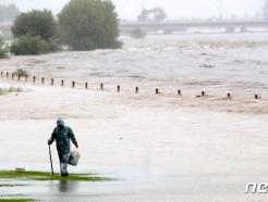 [사진] 집중호우로 물에 잠긴 대전 갑천
