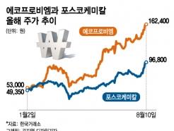 전기차 배터리 낙수효과…주가 3배 뛴 소재기업