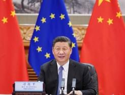 중국 스파이 '비상'…스타교수도 의원도 예외 없다