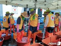 [사진] 수해지역 세탁 봉사활동하는 한적
