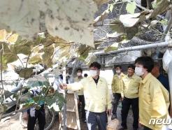 [사진] 침수 피해 농가 찾은 허태웅 신임 농진청장