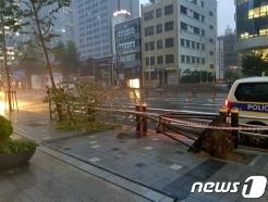 [속보] 제10호 태풍 '하이선' 북상에 부산 하늘길·뱃길 끊겨
