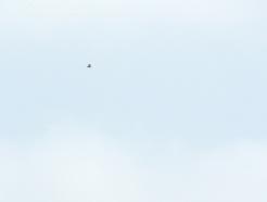 [사진] 추석, 북녘 바라보는 시민들
