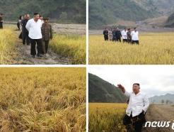 [사진] 강원도 수해 현장 찾은 김정은, 농작물 작황에 만족