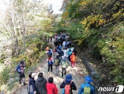 하동군, '지리산 회남재 숲길 걷기' 행사 개최
