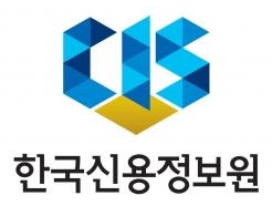 신용정보원, '맞춤형 데이터베이스 시범서비스' 추진
