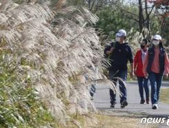 [사진] 가을 만끽하는 시민들