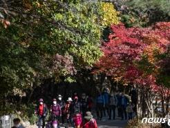 [사진] 물들어가는 가을산 찾은 시민들