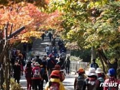 [사진] 가을 산으로 향하는 시민들
