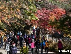 [사진] 주말 '가을산으로 향하는 시민들'