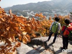 [사진] 가을 단풍철 산에 올라