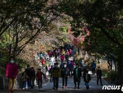 [사진] 주말 오전 '산 찾는 시민들'