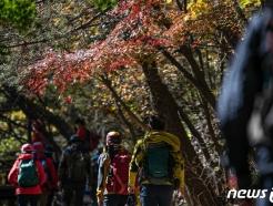 [사진] 가을산 오르는 시민들