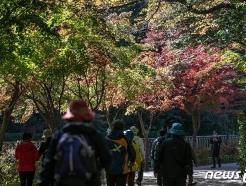 [사진] 사회적 거리두기 1단계 산으로 향하는 시민들