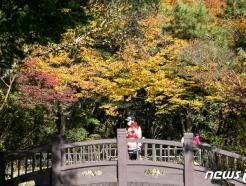 [사진] 가을 찾아온 관악산
