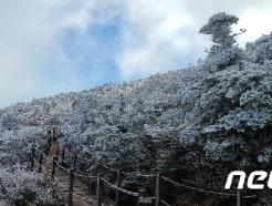 [오늘의 날씨] 제주(30일, 금)…큰 일교차 주의