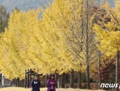 [오늘의 날씨]대전·충남(30일, 금)…아침 기온 낮아 추워