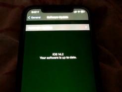 """애플, 아이폰12 화면 결함 인정…""""화면깜박임·녹조현상 원인 조사 중"""""""