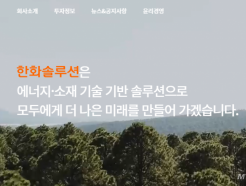 """1.2조 증자 한화솔루션… """"주가 빠지면 매수기회 삼아라"""""""