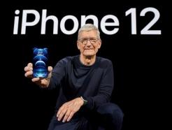 <strong>현대차</strong>가 물러선 이유? '애플은 애플이라 부르면 안 된다'