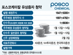 <strong>포스코케미칼</strong>, 유증 단수주 청약 19일 마감…'마지막 세일' 기회
