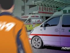 구급차에 애완견 동승 거부 이유로 소방대원 폭행한 50대 '집유'