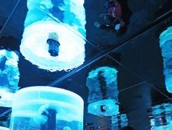 [사진] '눈 앞에서 만나보는 해파리'