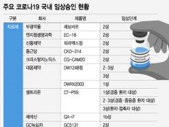 """셀트리온 잇는 K치료제…""""상반기 3~4종 사용 가능성"""""""