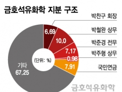 <strong>금호</strong>석화 분쟁 변수?…박철완 명부 열람, 일단 '연기'
