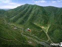 장수군, 산림치유 공간 '치유의 숲' 조성…7월 개장