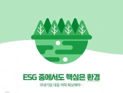 [사진] [그래픽뉴스] ESG 중에서도 핵심은 환경