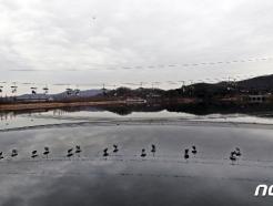 [사진] 리프트 타며 포근한 날씨 만끽하는 시민들