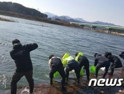 수자원공사, 낙동강서 연어 방류…생태복원 사업 활성화