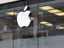 """""""애플, 12.9인치 '아이패드 프로' 출시에 제동"""" -블룸버그"""