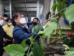 [사진] 허태웅 청장,  커피 재배농가 방문