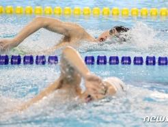 [사진] 훈련하는 수영 대표팀