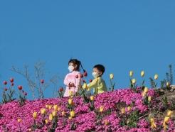 [사진] 형형색색 꽃 피운 함양생태체험장