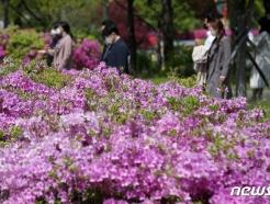 [사진] 봄이 왔나봄