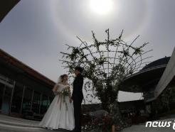 [사진] 신랑·신부 머리 위에 나타난 햇무리